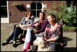 Cursus Communiceren met Dieren in een groep_