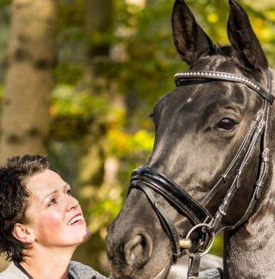 Consult reis door het lichaam en sessie trauma verwijderen bij dier