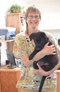 Online Workshop Mijn Kat en Hond Natuurlijk Gezond Actie