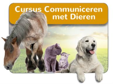 Cursus Communiceren met Dieren in een groep